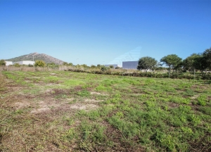 1.000 m2 plot in industrial park,